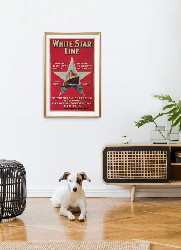 white-star-line-red-poster-2